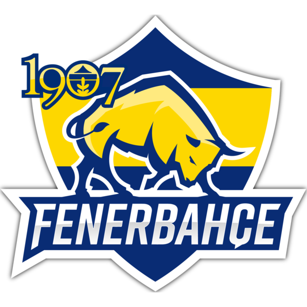 Fenerbahce Academy