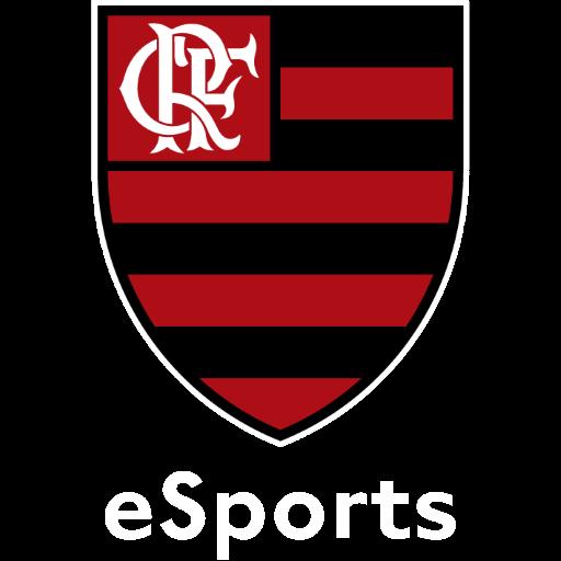 Flamengo Academy